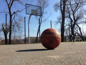 Basketball Magdeburg